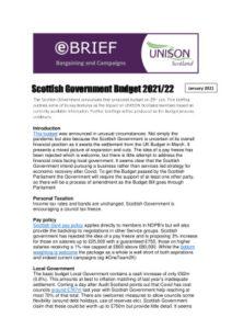 thumbnail of Budgetbrief202122jan21